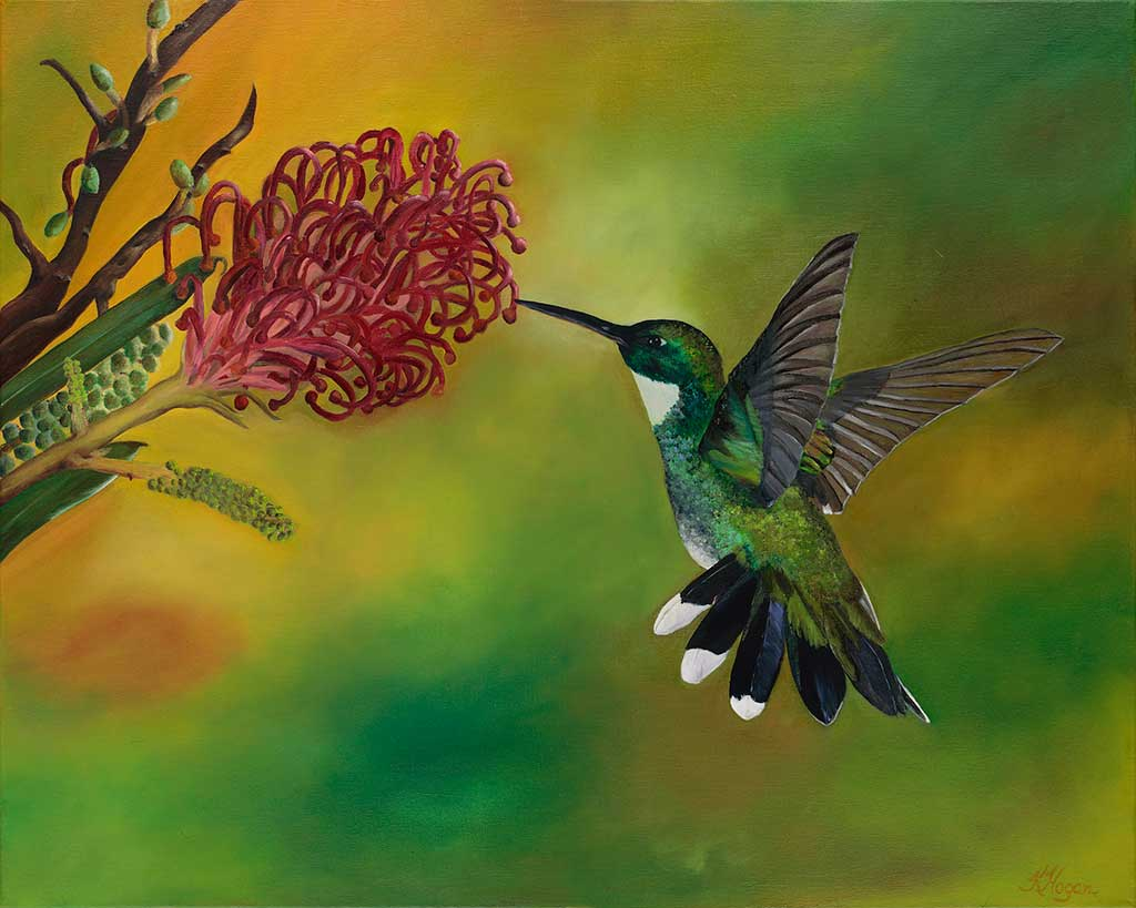 Humming Bird 1 - Kim Hogan Fine Art